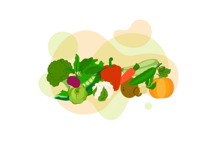 Gemüse_Fein-Snacker_Zeichenfläche_1